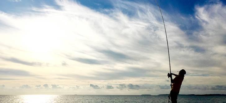 【冬のターゲット】カレイの投げ釣り講座