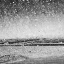 雨が降ってても釣りに行きたい!【レインウェア特集】