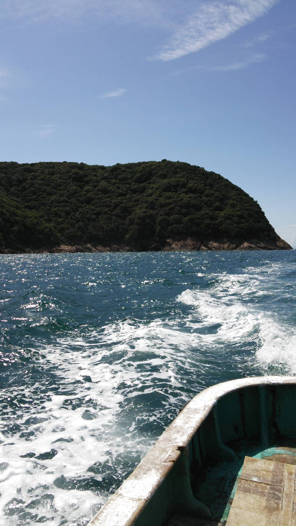 エギングの時期 和歌山の夏 2017エギング夏の投稿まとめ②!