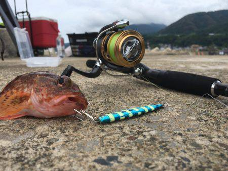 豪雨後の釣行