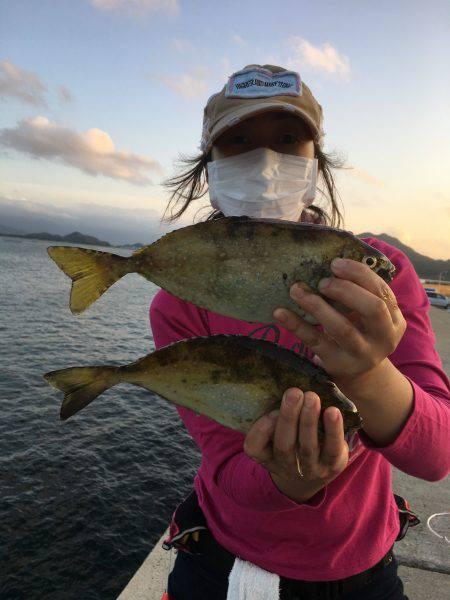 夕マズメ。久しぶりの唐泊漁港で釣り。