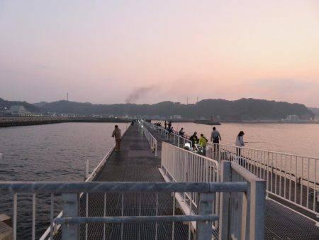 豊浜→師崎方面