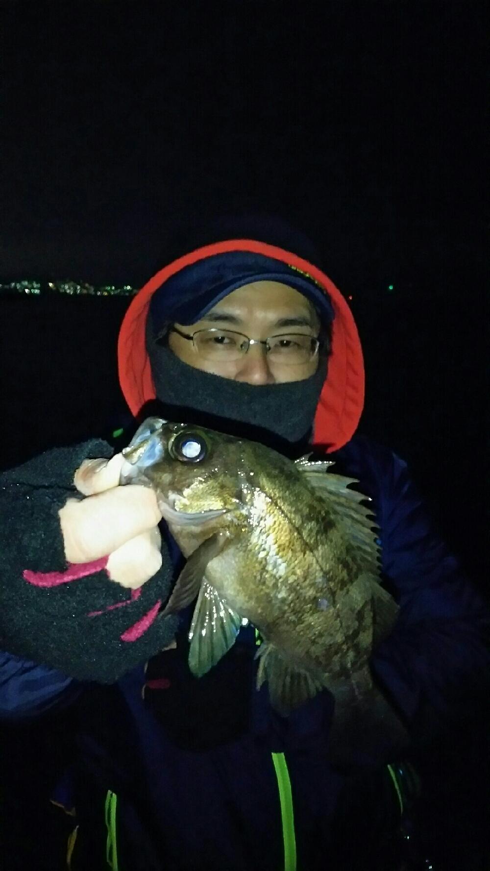 大蔵海岸での釣り 冬のメバリング・ロックフィッシュ釣り情報・釣果