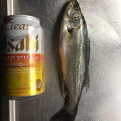 魚のアタリが欲しくて!