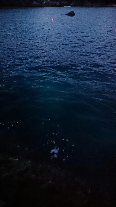 釣れる雰囲気が海面から漂う