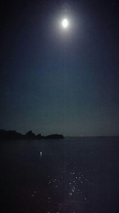 月明かりが照らす釣れそうな雰囲気の海面